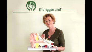 """Vortrag: """"Warum und wie sich akustische Einflüsse auf unser Immunsystem auswirken und nutzen lassen-"""" mit Kerstin Brachaus-Mechow"""